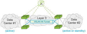 active-active-standby-over-vxlan
