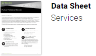 data-sheet-pluribus-professional-services2