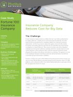 Fortune 100 Insurance Company