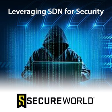 Leveraging SDN for Security