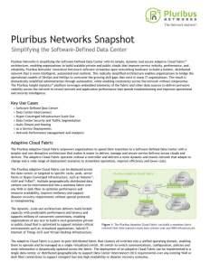 Pluribus Networks Snapshot (June 2017)