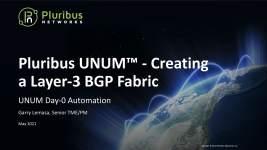 https://www.pluribusnetworks.com/assets/UNUM-Creating-a-Layer-3-BGP-Fabric.jpg