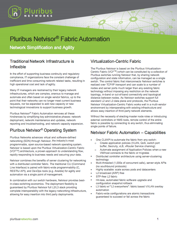 netvisor fabric automation