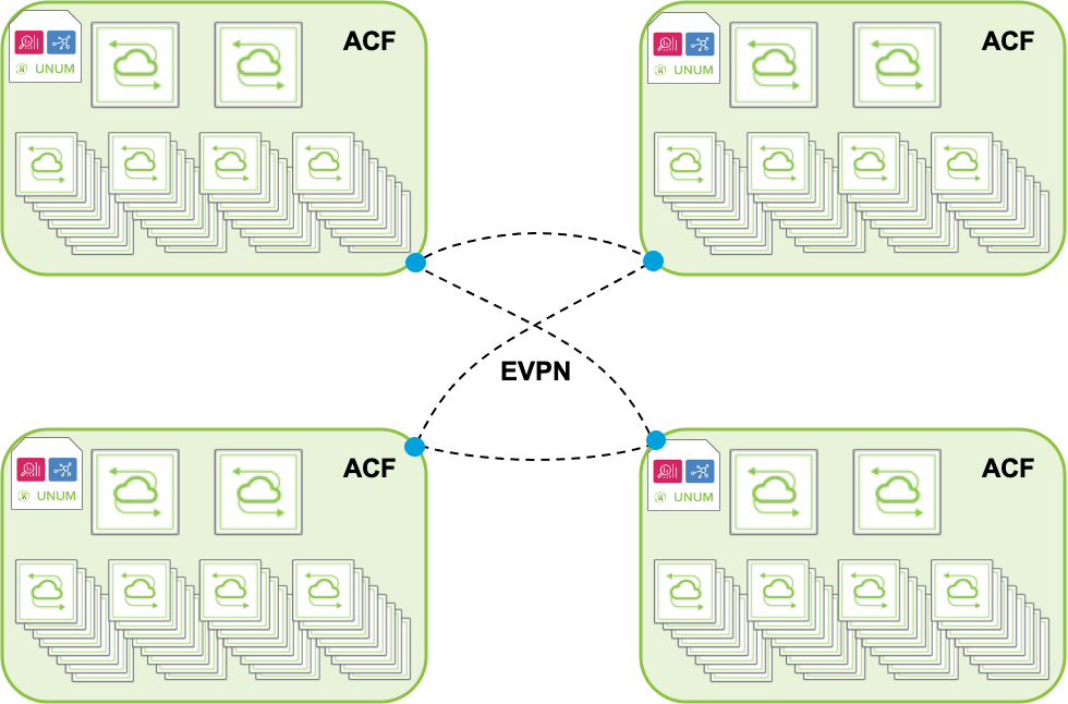 diagram: EVPN Fabric Extension for Architectural Flexibility