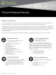 professional-services-datasheet-thumb